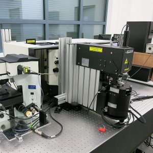 SmartSPM Scanning Probe Microscope Horiba Integrated with Raman spectrometer for Biomedical Studies