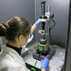 Scanning Probe Microscope for SAMs Analysis